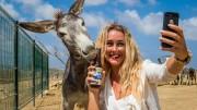 Bonaire Blond photo contest
