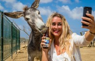 Bonaire Blond Photo contest