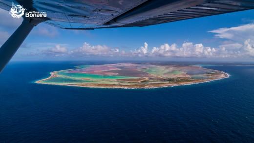 The magnificent colors of Bonaire