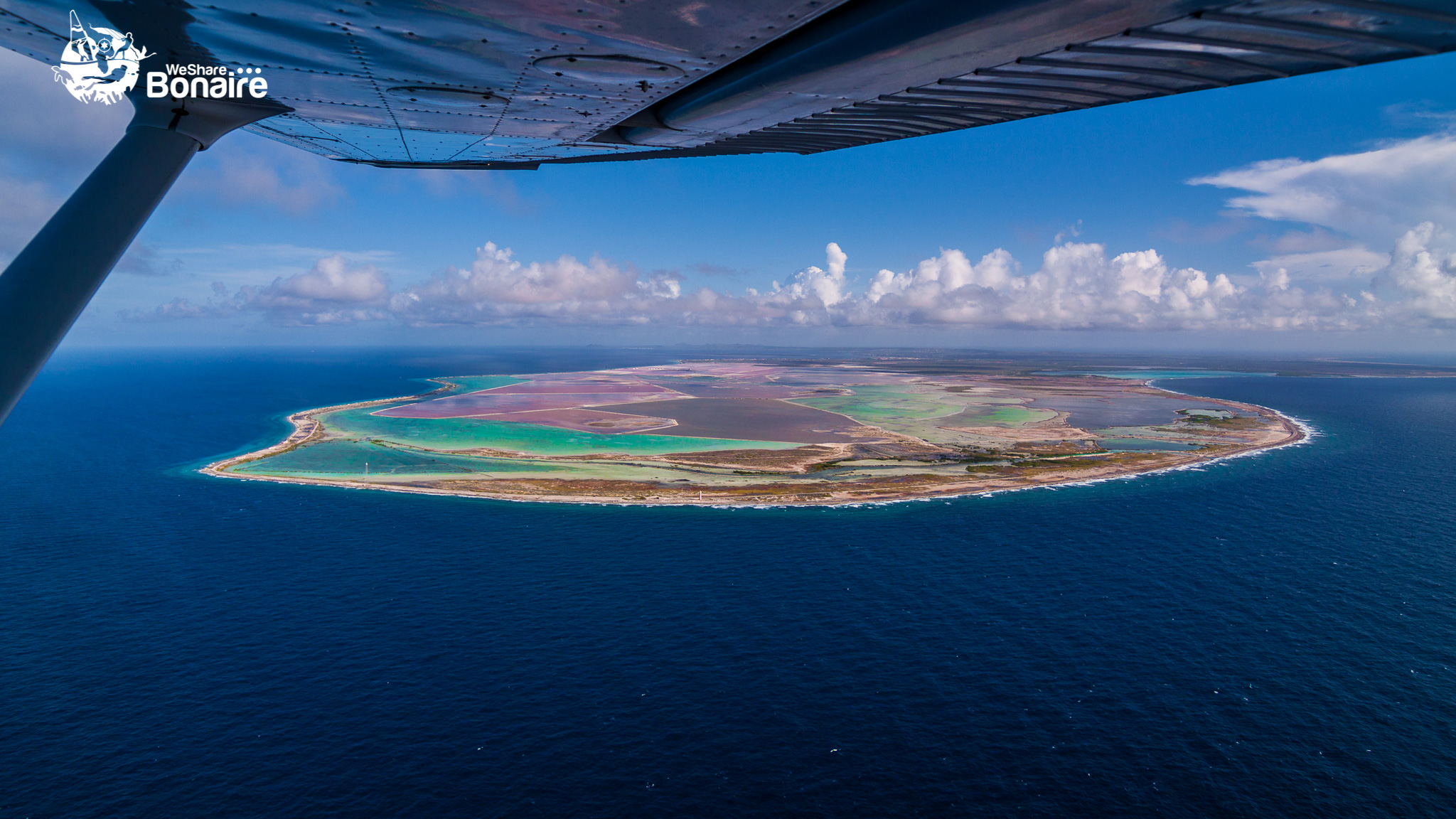 The magnificent colors of Bonaire