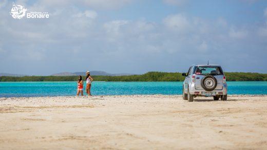Avis – Exploring Bonaire
